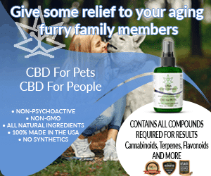 DNA Hemp Company CBD for Pets 300 x 250